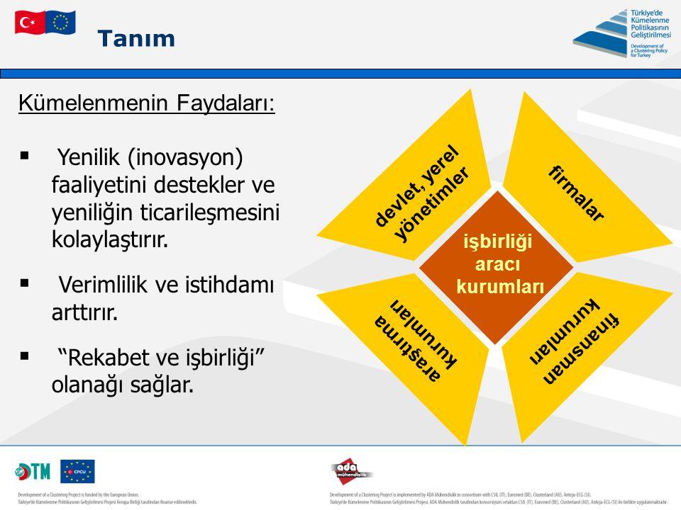 Tanım işbirliği aracı kurumları devlet, yerel yönetimler araştırma kurumları firmalar finansman kurumları Kümelenmenin Faydaları:  Yenilik (inovasyon