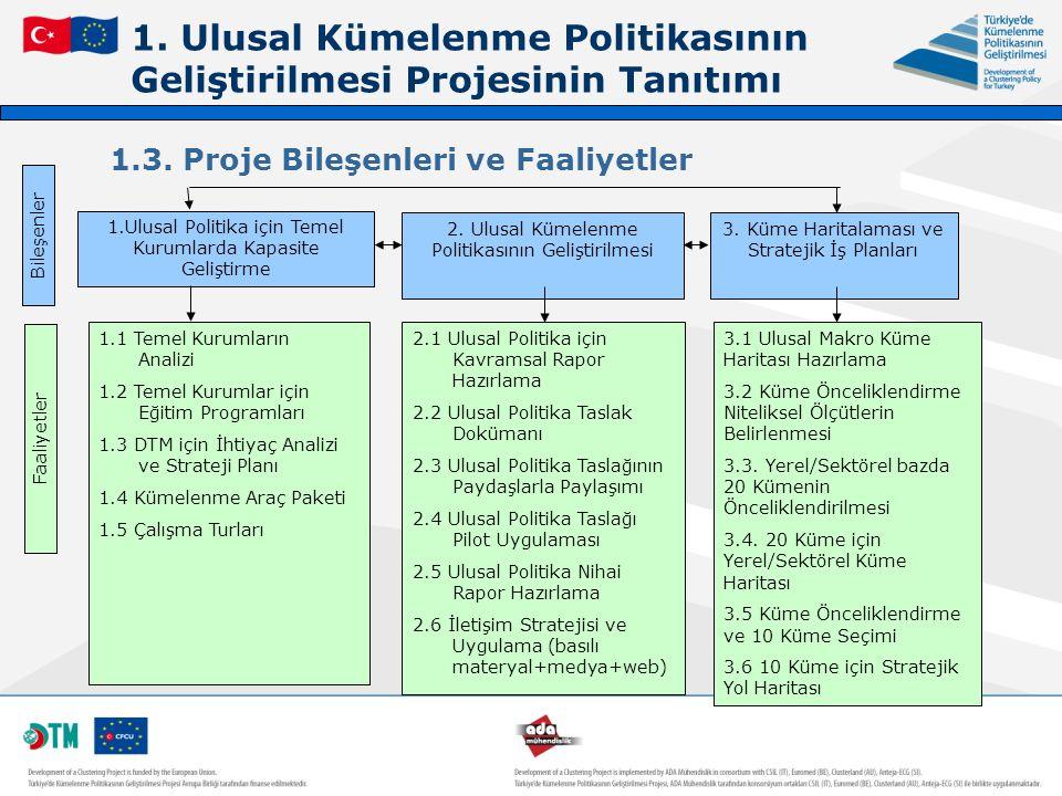1. Ulusal Kümelenme Politikasının Geliştirilmesi Projesinin Tanıtımı 1.3. Proje Bileşenleri ve Faaliyetler 1.Ulusal Politika için Temel Kurumlarda Kap