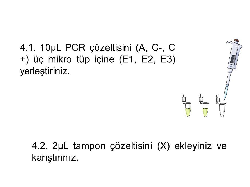4.1. 10μL PCR çözeltisini (A, C-, C +) üç mikro tüp içine (E1, E2, E3) yerleştiriniz.