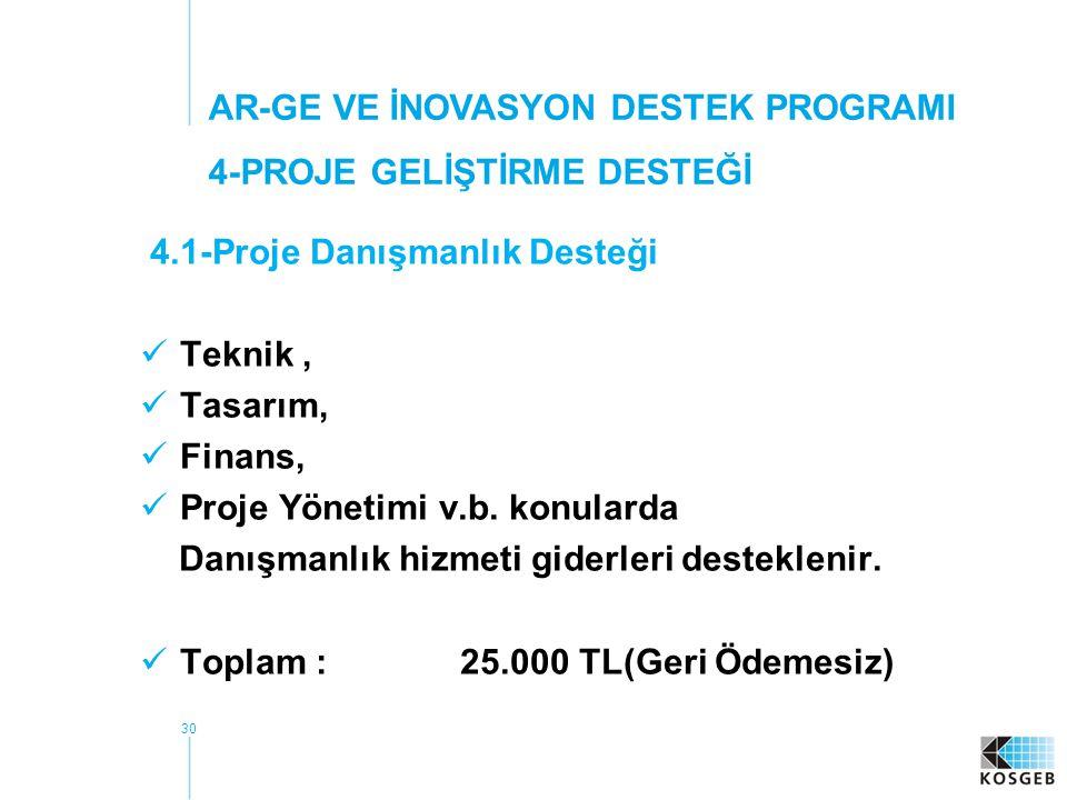 30 4.1-Proje Danışmanlık Desteği Teknik, Tasarım, Finans, Proje Yönetimi v.b.