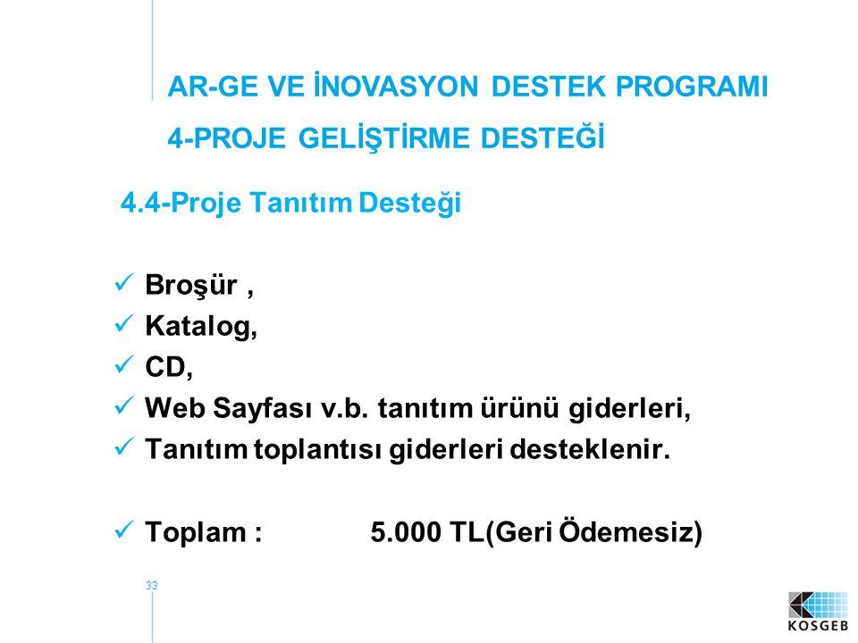 33 4.4-Proje Tanıtım Desteği Broşür, Katalog, CD, Web Sayfası v.b.