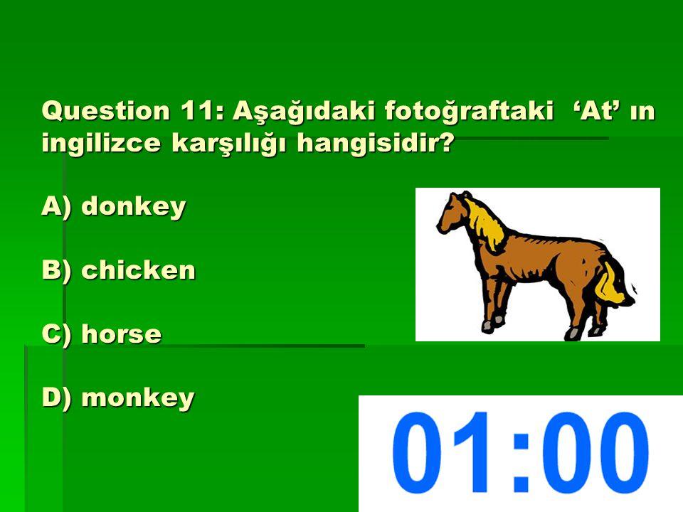 Question 11: Aşağıdaki fotoğraftaki 'At' ın ingilizce karşılığı hangisidir.