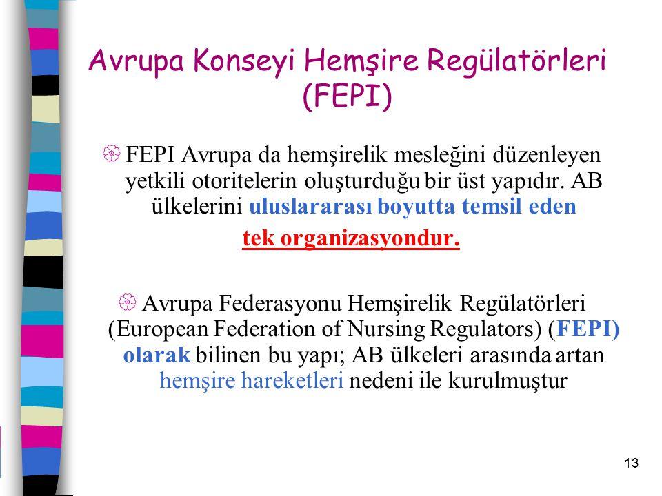 13  FEPI Avrupa da hemşirelik mesleğini düzenleyen yetkili otoritelerin oluşturduğu bir üst yapıdır. AB ülkelerini uluslararası boyutta temsil eden t