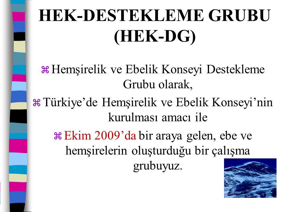 HEK-DESTEKLEME GRUBU (HEK-DG)  Hemşirelik ve Ebelik Konseyi Destekleme Grubu olarak,  Türkiye'de Hemşirelik ve Ebelik Konseyi'nin kurulması amacı il