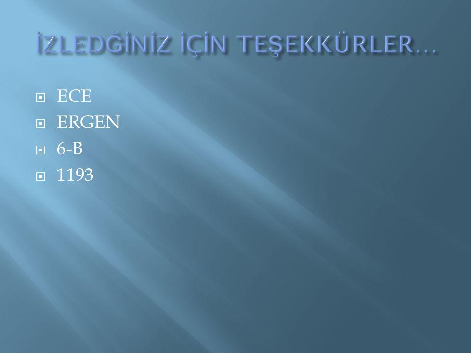 ECE  ERGEN  6-B  1193