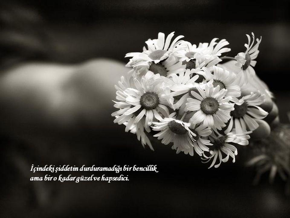 İçindeki şiddetin durduramadığı bir bencillik ama bir o kadar güzel ve hapsedici.