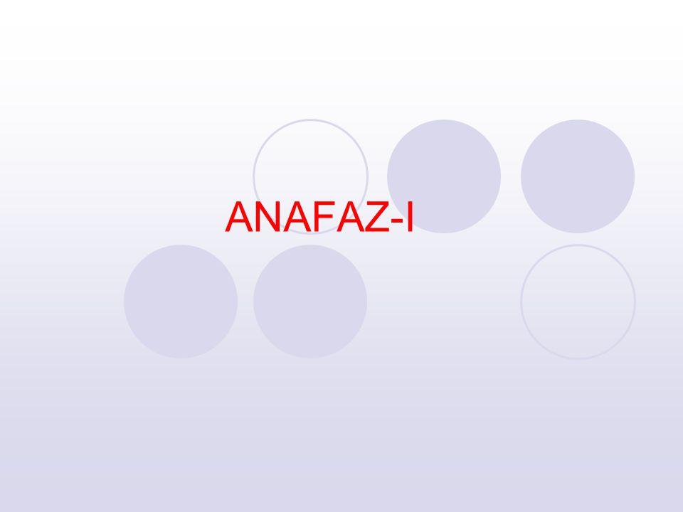 ANAFAZ-I
