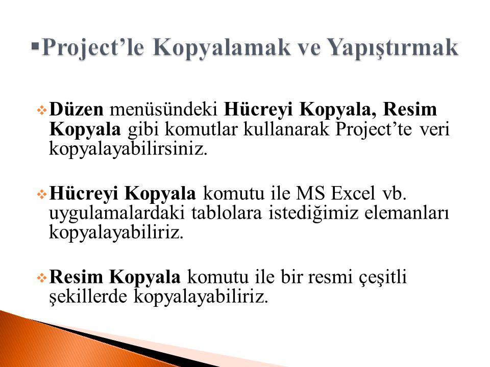  Düzen menüsündeki Hücreyi Kopyala, Resim Kopyala gibi komutlar kullanarak Project'te veri kopyalayabilirsiniz.  Hücreyi Kopyala komutu ile MS Excel