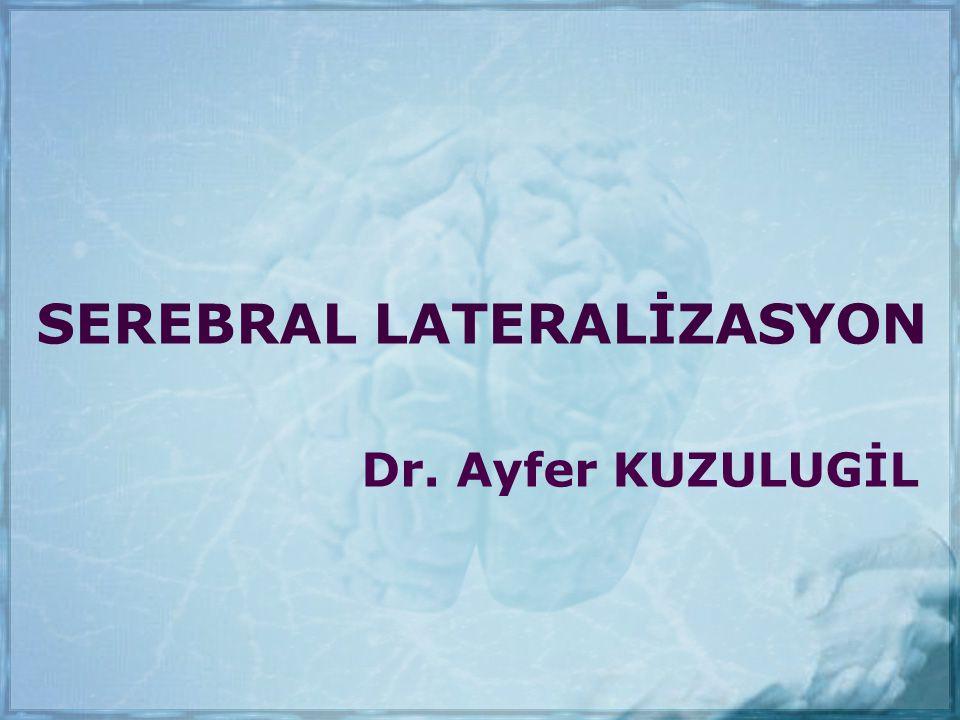 SEREBRAL LATERALİZASYON Dr. Ayfer KUZULUGİL