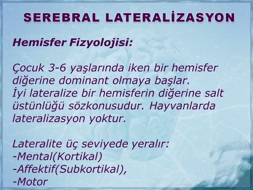 Hemisfer Fizyolojisi: Çocuk 3-6 yaşlarında iken bir hemisfer diğerine dominant olmaya başlar. İyi lateralize bir hemisferin diğerine salt üstünlüğü sö
