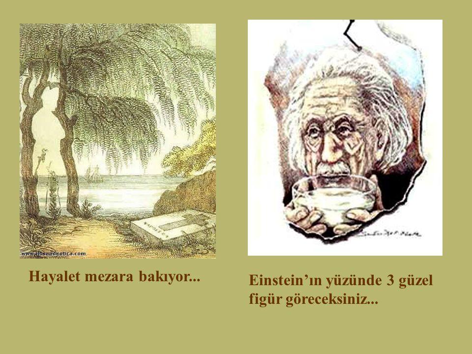 Hayalet mezara bakıyor... Einstein'ın yüzünde 3 güzel figür göreceksiniz...