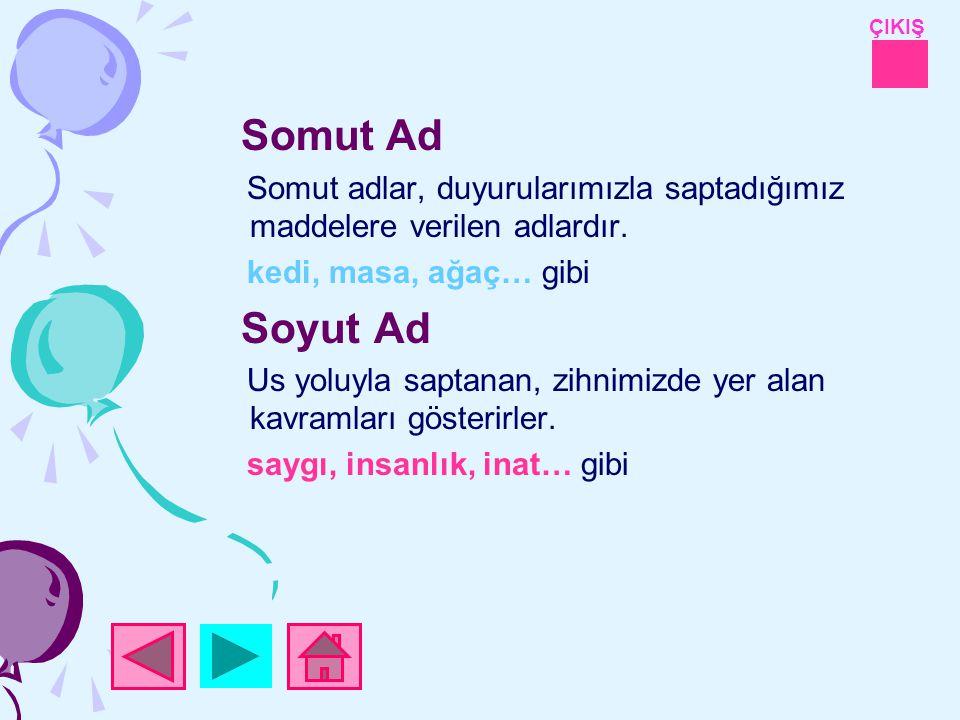 ÇIKIŞ Somut Ad Somut adlar, duyurularımızla saptadığımız maddelere verilen adlardır.