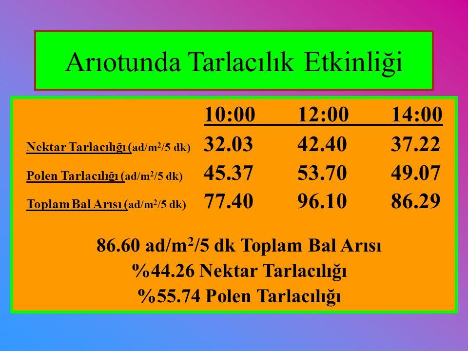 10:0012:0014:00 Nektar Tarlacılığı ( ad/m 2 /5 dk) 32.0342.4037.22 Polen Tarlacılığı ( ad/m 2 /5 dk) 45.3753.7049.07 Toplam Bal Arısı ( ad/m 2 /5 dk)