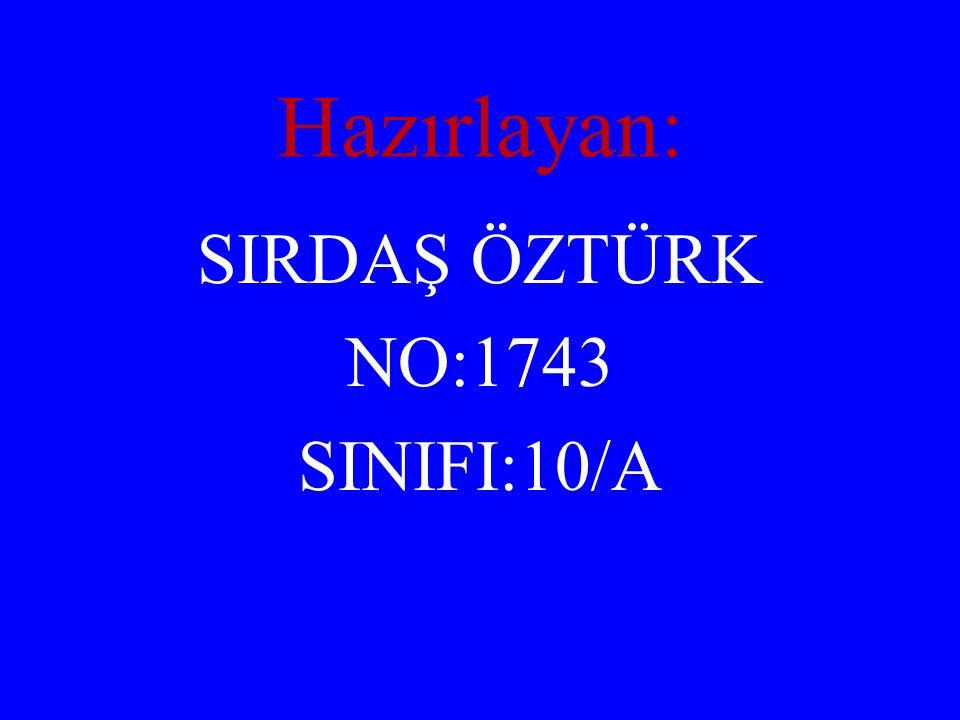 Hazırlayan: SIRDAŞ ÖZTÜRK NO:1743 SINIFI:10/A