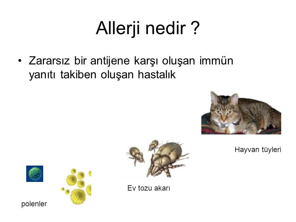 DERİNİN NEMLENDİRİLMESİ Banyo ile cilt yüzeyindeki allerjenler de uzaklaştırılır ve deride Staf.