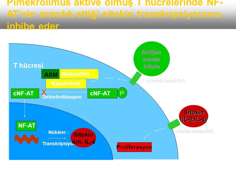 Etki mekanizması 2 Dermis Epidermis Allergens T cells Dermis Inflammatory cytokines Allergens Inflammatory cytokines Epidermis T cells Mast cell Elide