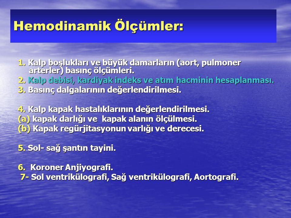 Hemodinamik Ölçümler: 1.