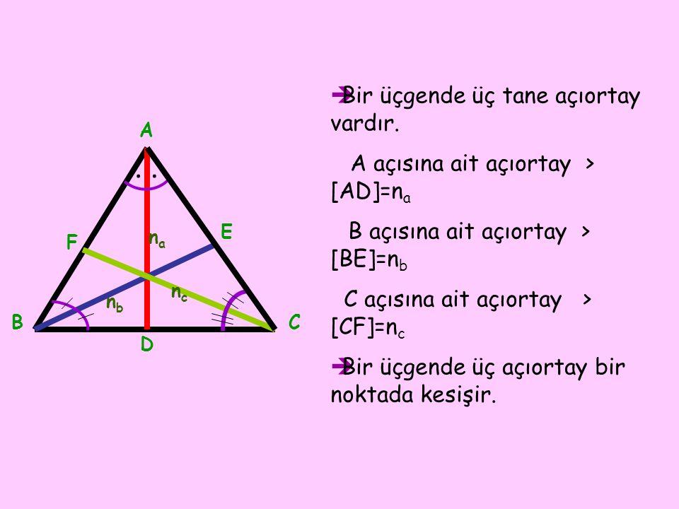 .. BBir üçgende üç tane açıortay vardır. A açısına ait açıortay > [AD]=n a B açısına ait açıortay > [BE]=n b C açısına ait açıortay > [CF]=n c BBi