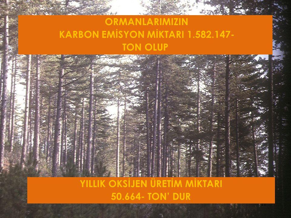 11 ORMANLARIMIZIN KARBON EMİSYON MİKTARI 1.582.147- TON OLUP YILLIK OKSİJEN ÜRETİM MİKTARI 50.664- TON' DUR
