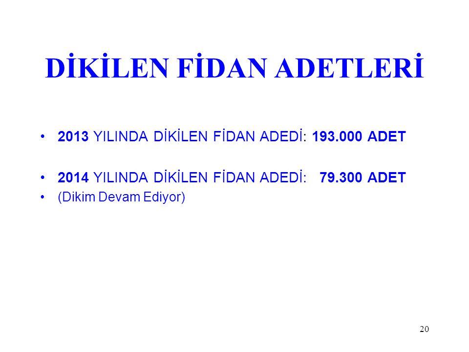 DİKİLEN FİDAN ADETLERİ 2013 YILINDA DİKİLEN FİDAN ADEDİ: 193.000 ADET 2014 YILINDA DİKİLEN FİDAN ADEDİ: 79.300 ADET (Dikim Devam Ediyor) 20