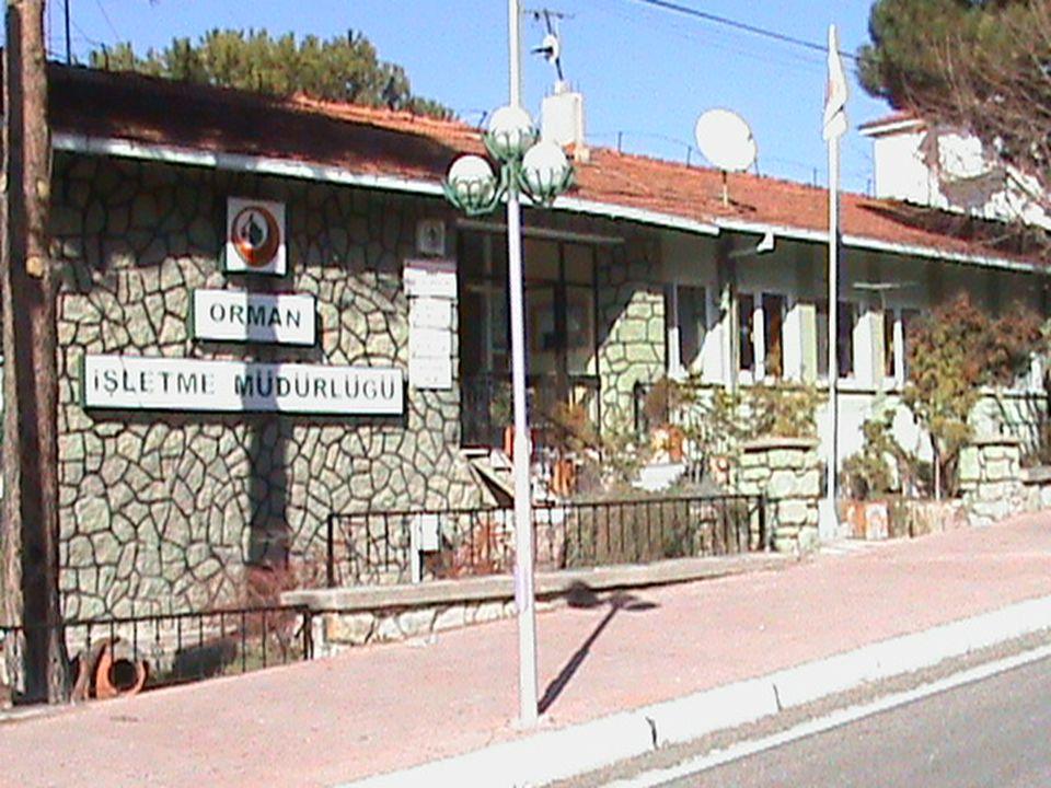KURULUŞ 4 Demirci Orman İşletme Müdürlüğü 05.01.1959 tarihinde Demirci, Kula, Selendi İlçelerini kapsayacak şekilde kurulmuş olup, daha sonra 2011 yılında Köprübaşı İlçesi dahil edilmiştir.
