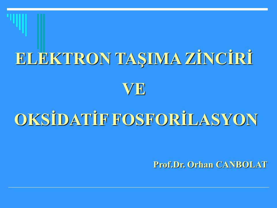 ELEKTRON TAŞIMA ZİNCİRİ VE OKSİDATİF FOSFORİLASYON OKSİDATİF FOSFORİLASYON Prof.Dr. Orhan CANBOLAT