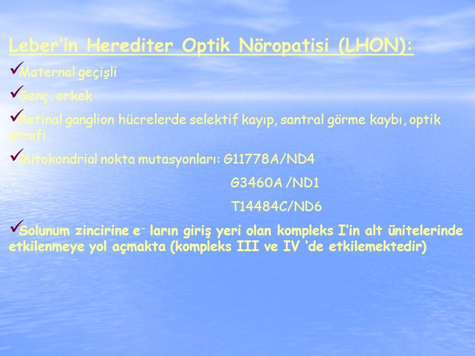 Leber'in Herediter Optik Nöropatisi (LHON): Maternal geçişli Genç, erkek Retinal ganglion hücrelerde selektif kayıp, santral görme kaybı, optik atrofi Mitokondrial nokta mutasyonları: G11778A/ND4 G3460A /ND1 T14484C/ND6 Solunum zincirine e - ların giriş yeri olan kompleks I'in alt ünitelerinde etkilenmeye yol açmakta (kompleks III ve IV 'de etkilemektedir)