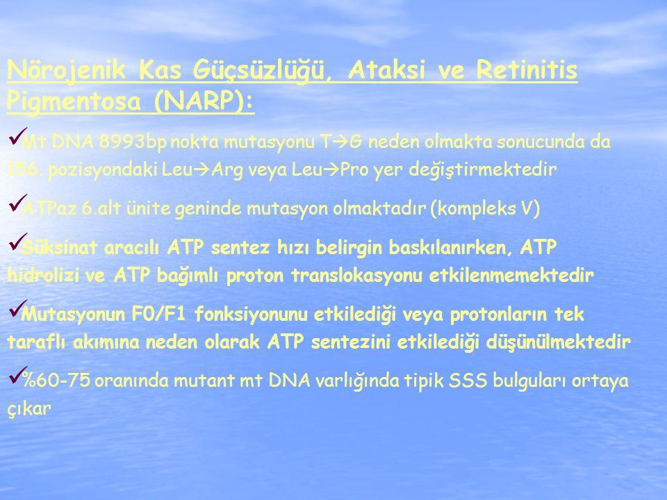Nörojenik Kas Güçsüzlüğü, Ataksi ve Retinitis Pigmentosa (NARP): Mt DNA 8993bp nokta mutasyonu T  G neden olmakta sonucunda da 156.