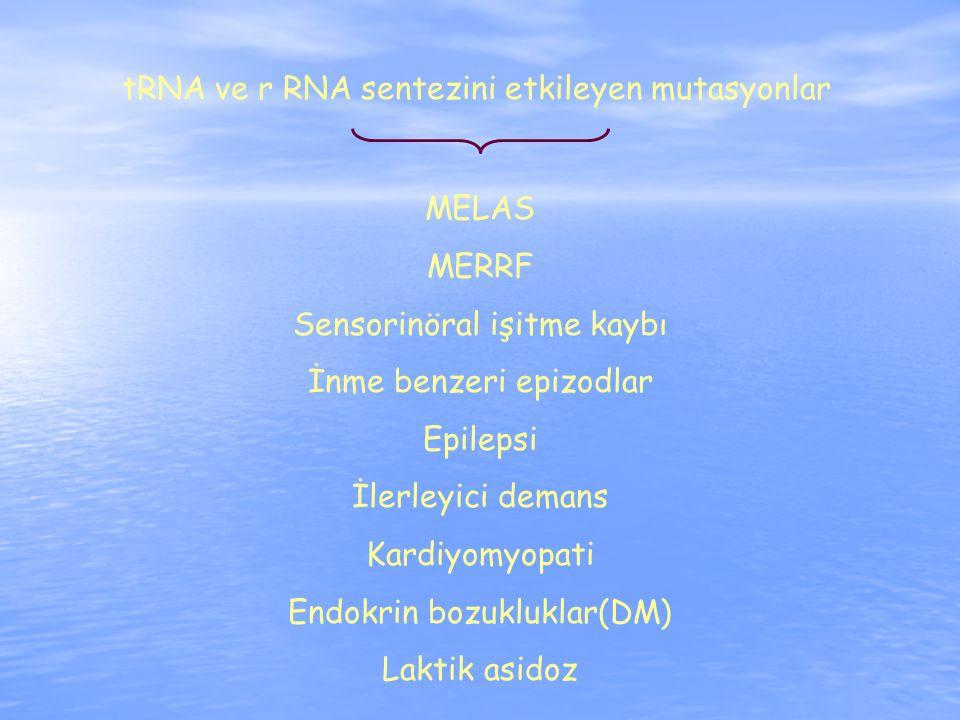 tRNA ve r RNA sentezini etkileyen mutasyonlar MELAS MERRF Sensorinöral işitme kaybı İnme benzeri epizodlar Epilepsi İlerleyici demans Kardiyomyopati Endokrin bozukluklar(DM) Laktik asidoz