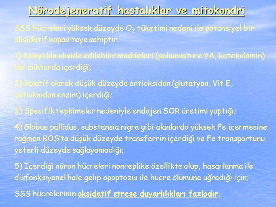 Nörodejeneratif hastalıklar ve mitokondri SSS hücreleri yüksek düzeyde O 2 tüketimi nedeni ile potansiyel bir oksidatif kapasiteye sahiptir.
