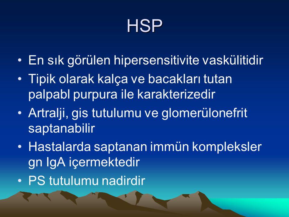 HSP En sık görülen hipersensitivite vaskülitidir Tipik olarak kalça ve bacakları tutan palpabl purpura ile karakterizedir Artralji, gis tutulumu ve glomerülonefrit saptanabilir Hastalarda saptanan immün kompleksler gn IgA içermektedir PS tutulumu nadirdir