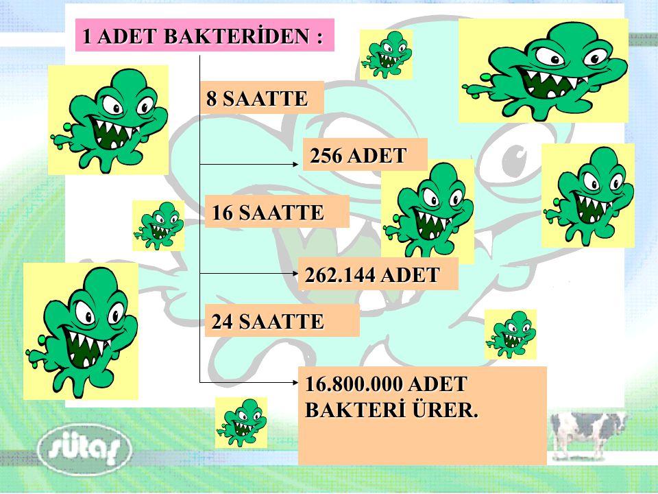 1 ADET BAKTERİDEN : 8 SAATTE 256 ADET 262.144 ADET 16 SAATTE 16.800.000 ADET BAKTERİ ÜRER. 24 SAATTE
