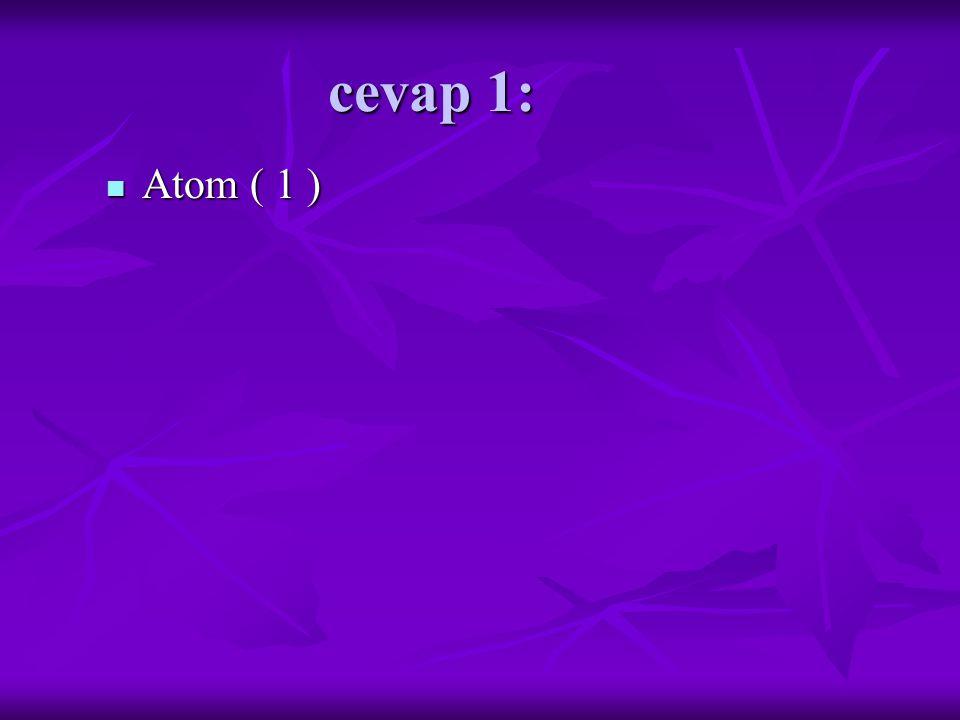 cevap 1: Atom ( 1 ) Atom ( 1 )