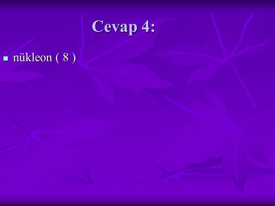 Cevap 4: nükleon ( 8 ) nükleon ( 8 )