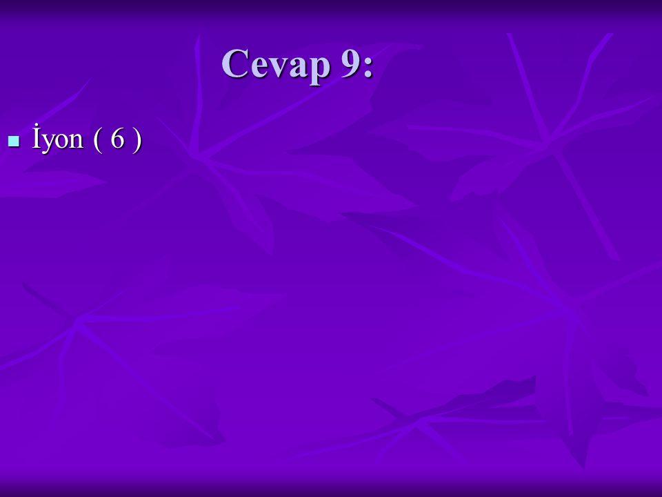 Cevap 9: İyon ( 6 ) İyon ( 6 )