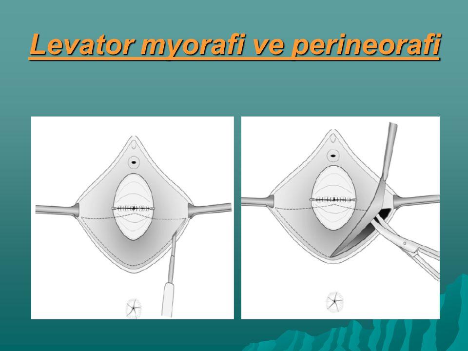 Levator myorafi ve perineorafi