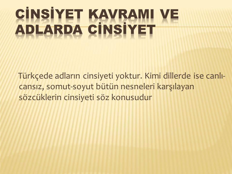 Türkçede adların cinsiyeti yoktur. Kimi dillerde ise canlı- cansız, somut-soyut bütün nesneleri karşılayan sözcüklerin cinsiyeti söz konusudur