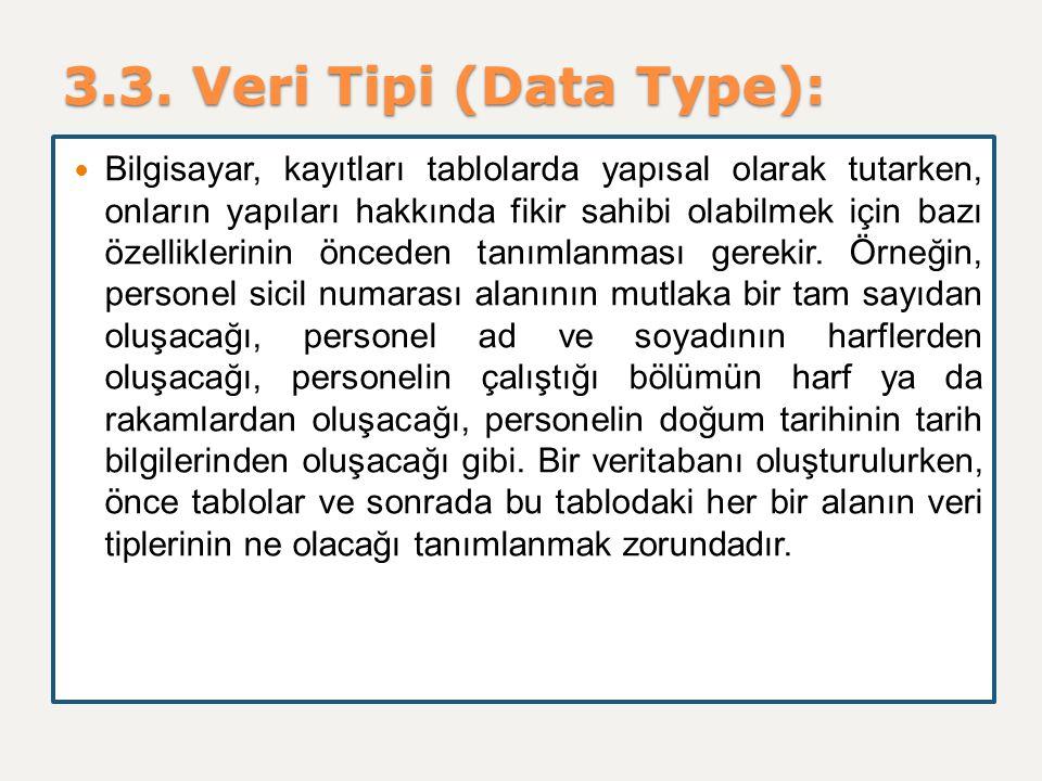3.3. Veri Tipi (Data Type): Bilgisayar, kayıtları tablolarda yapısal olarak tutarken, onların yapıları hakkında fikir sahibi olabilmek için bazı özell