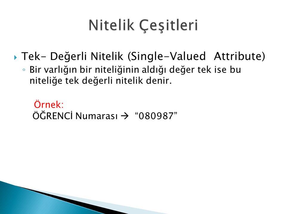  Tek- Değerli Nitelik (Single-Valued Attribute) ◦ Bir varlığın bir niteliğinin aldığı değer tek ise bu niteliğe tek değerli nitelik denir. Örnek: ÖĞR