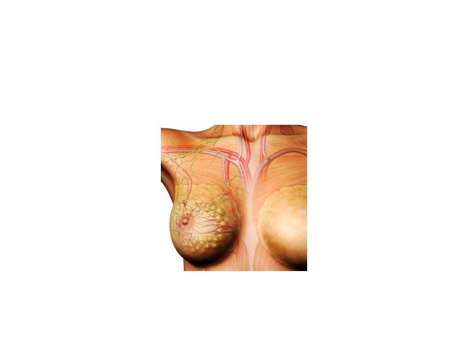 Deri ile ilgili enfeksiyonlar Obes, zayıf hijyen Cerrahi girişim sonrası Radyoterapi sonrası – Sellülit – Abse – Pilonidal sinüs – Hidraadenitis suppurativa