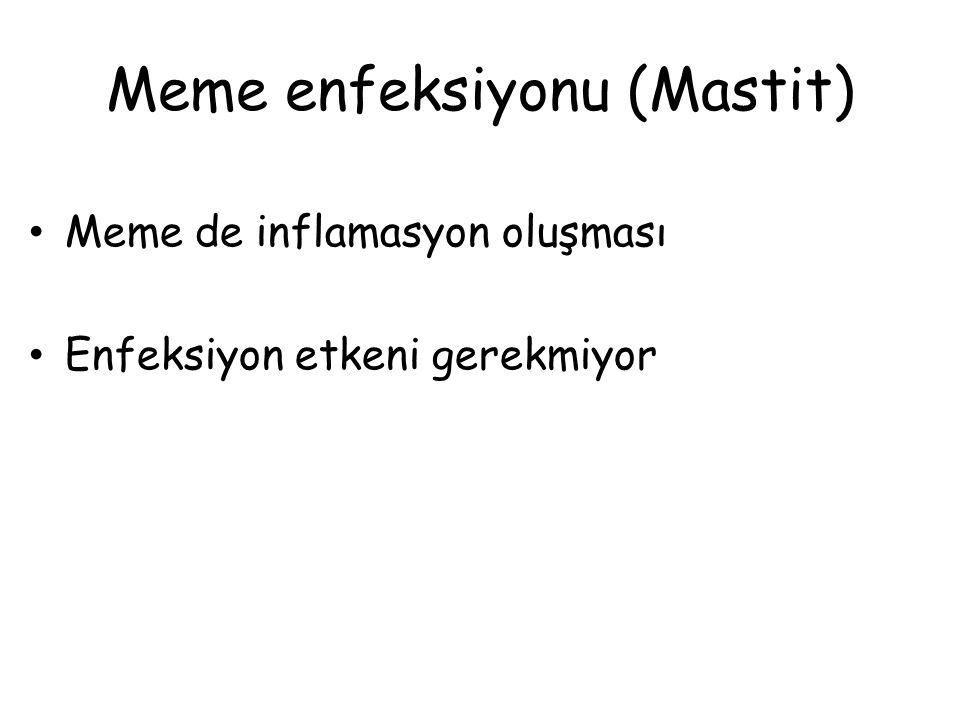 Meme enfeksiyonu (Mastit) Meme de inflamasyon oluşması Enfeksiyon etkeni gerekmiyor