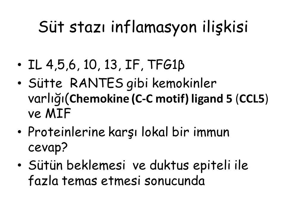 Süt stazı inflamasyon ilişkisi IL 4,5,6, 10, 13, IF, TFG1β Sütte RANTES gibi kemokinler varlığı( Chemokine (C-C motif) ligand 5 (CCL5) ve MIF Proteinl