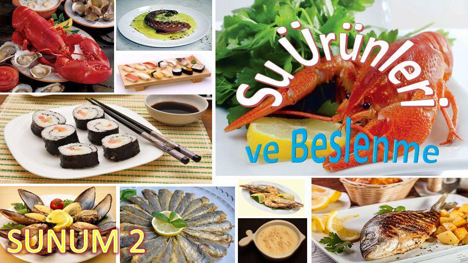 Osmanlı Deniz Mutfağımız Balık, Osmanlı için çok önemli bir kültürdür.