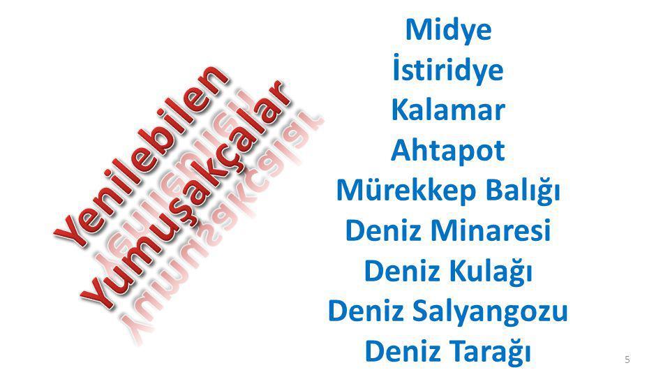 Osmanlı Deniz Mutfağımız II.