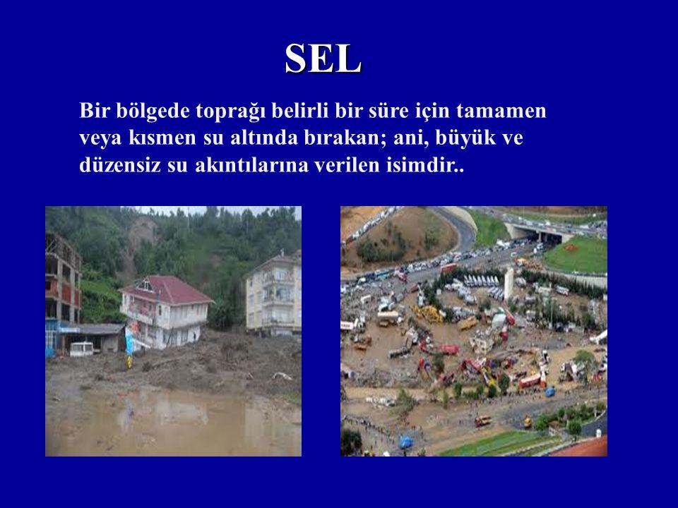 """TEMA VAKFININ EROZYANLA MÜCADELE UYGULAMA PROJELERİ Mera ıslah projeleri, Havza ıslah projeleri, Kırsal kalkınma amaçlı""""Erozyon Önleme """"projeleri, Tra"""