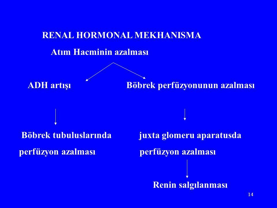 14 RENAL HORMONAL MEKHANISMA Atım Hacminin azalması ADH artışı Böbrek perfüzyonunun azalması Böbrek tubuluslarında juxta glomeru aparatusda perfüzyon azalması Renin salgılanması