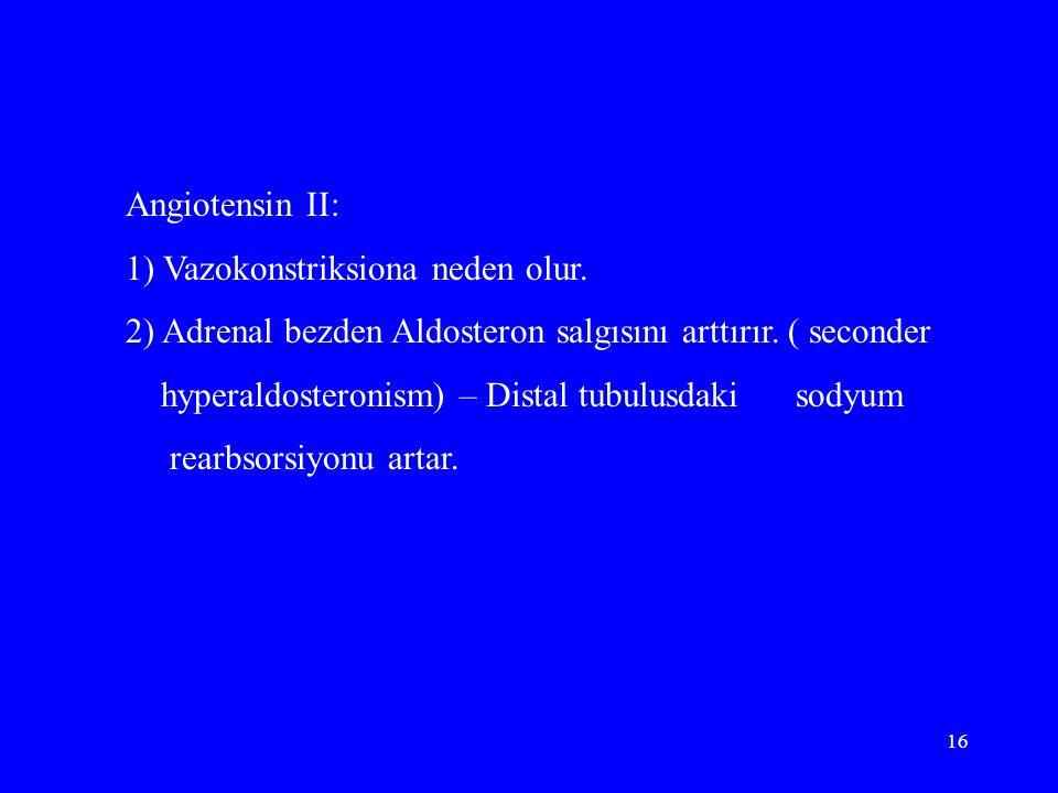 16 Angiotensin II: 1) Vazokonstriksiona neden olur. 2) Adrenal bezden Aldosteron salgısını arttırır. ( seconder hyperaldosteronism) – Distal tubulusda