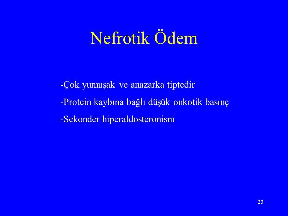 23 Nefrotik Ödem -Çok yumuşak ve anazarka tiptedir -Protein kaybına bağlı düşük onkotik basınç -Sekonder hiperaldosteronism