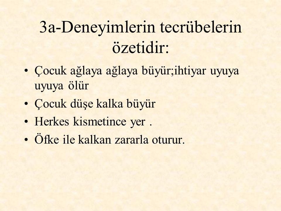 3b-Geçinme töresi ile alakalı olanlar: Bazı Türkler utangaçtır.