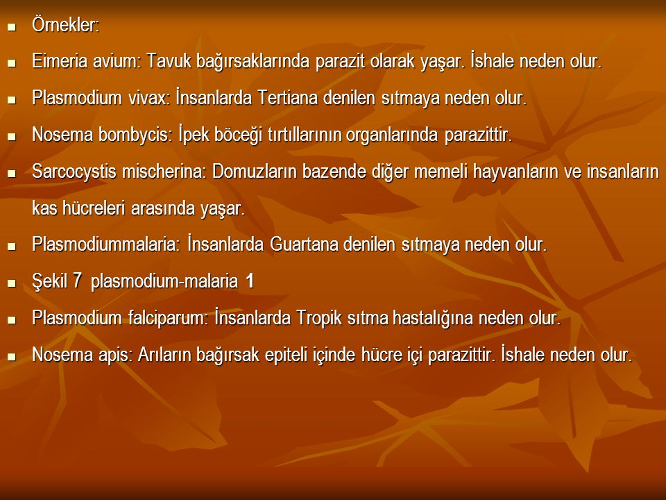 Örnekler: Örnekler: Eimeria avium: Tavuk bağırsaklarında parazit olarak yaşar. İshale neden olur. Eimeria avium: Tavuk bağırsaklarında parazit olarak